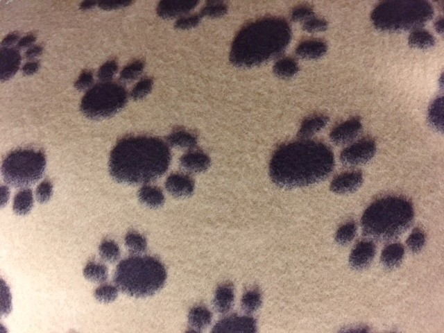 Tan with brown paw prints